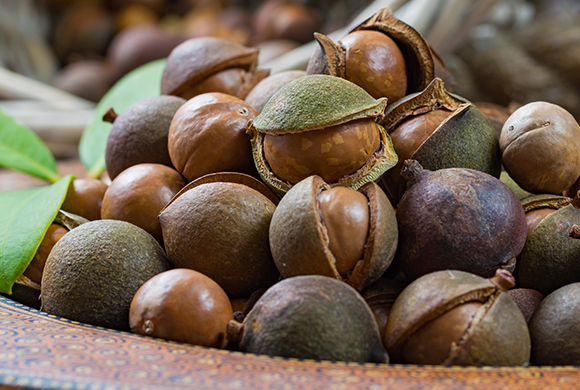 Macadamia Ternifolia Seed Oil (and) Vegetable Oil (Olus Oil) (and) Tocopherol